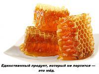 Нажмите на изображение для увеличения.  Название:мёд.jpg Просмотров:253 Размер:113.5 Кб ID:1111